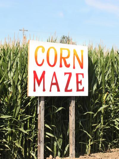 corn-maze-insurance-IL-IN-IA-KS-KY-MI-MN-MO-OH-WI