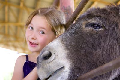 petting zoo insurance program